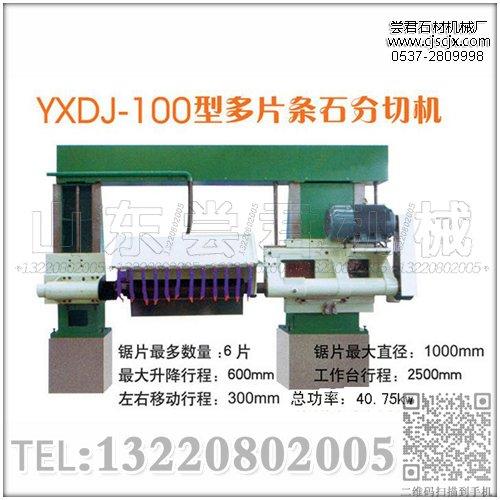 YXDJ-100型多片条石分切机